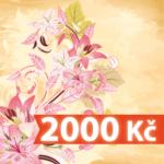 darkovy-poukaz-2000
