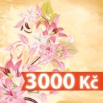 darkovy-poukaz-3000